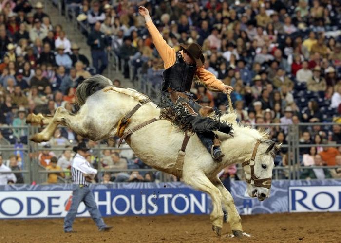 Houston Rodeo Time